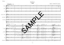 3 Aqaurelles for Chamber Orchestra op.114
